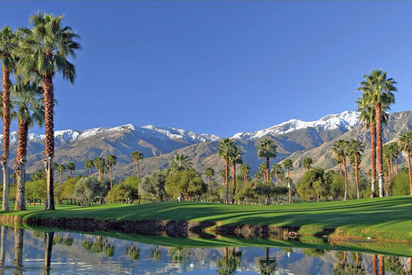 Palm Spring Hotels, Best Deals on Hotels in Palm Springs, Cheap Hotels in Palm Springs, Find Cheap Hotels in Palm Springs CA
